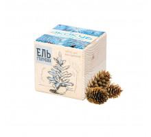 Набор для выращивания «Экокуб», ель голубая